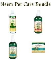 Making Neem Oil Spray For Dogs
